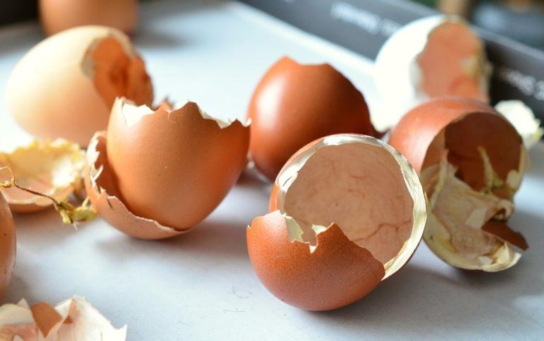 食べる 卵 の 殻